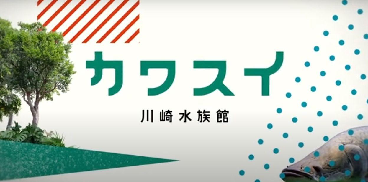 川崎市に初めての水族館!その名も「カワスイ 川崎水族館」