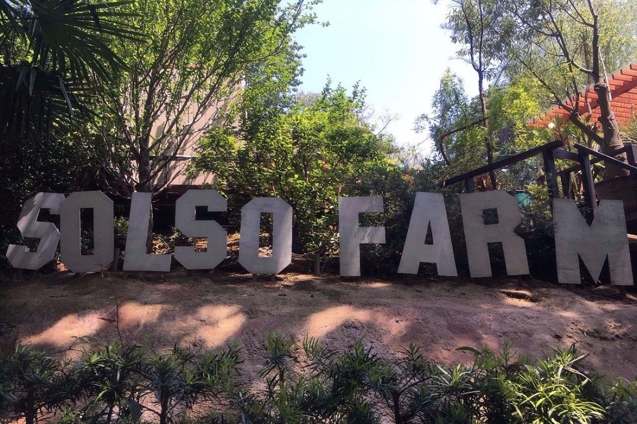 """週末は""""SOLSO FARM""""へGO!"""